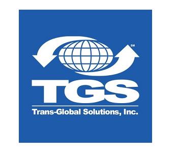 Trans Global Solutions Inc