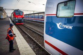 strizh-train