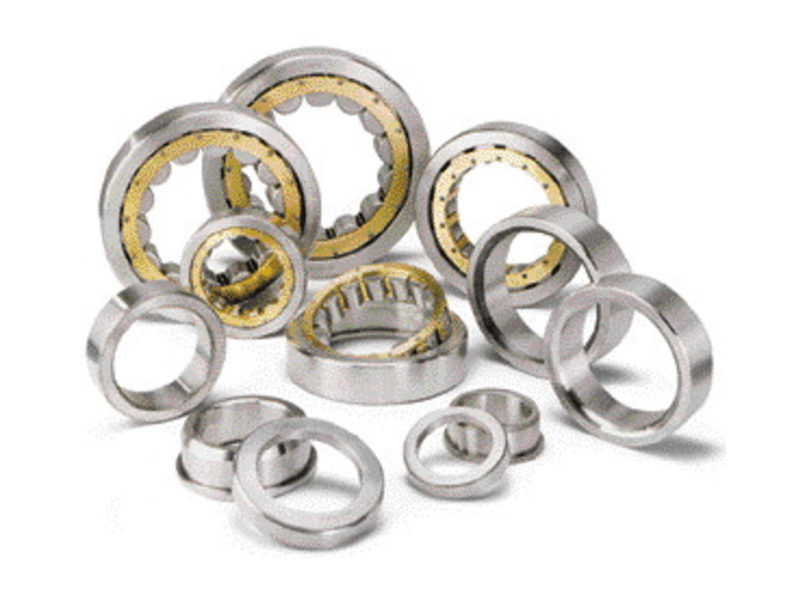 Traction Motor Bearings