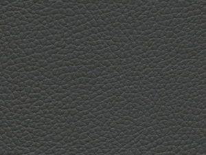 Genuine Leathers for Railway Interiors