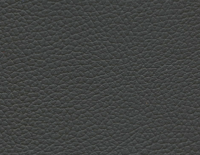 Perrone Rail Leather Featherweight