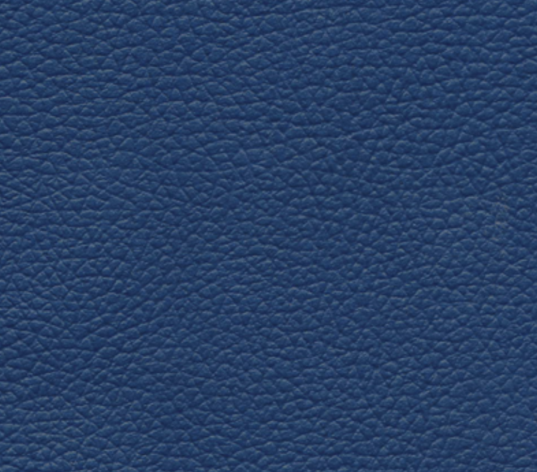 Rail Leather: Skyline